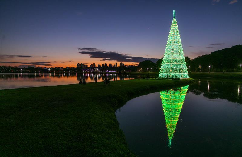 Com 55 mil lâmpadas, árvore do Barigui será...